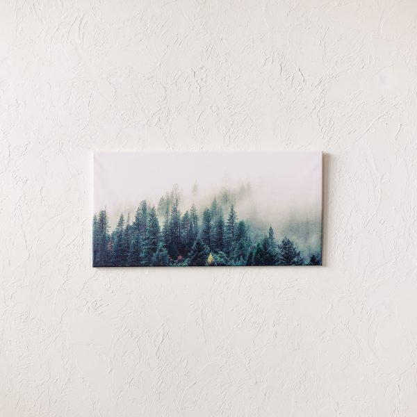 Fotokanva 50x100 cm